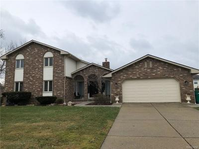 Novi Single Family Home For Sale: 22236 Cascade Dr