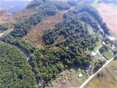 Grass Lake MI Residential Lots & Land For Sale: $159,000