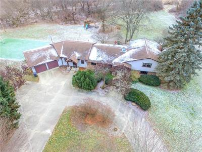 Brighton Single Family Home For Sale: 11768 Hyne Rd