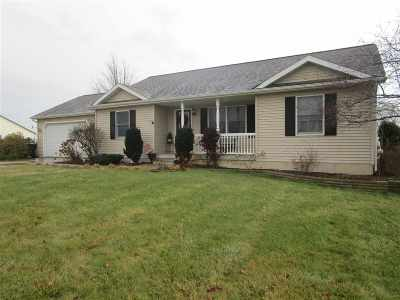 Lenawee County Single Family Home Contingent - Financing: 9063 Kings Court