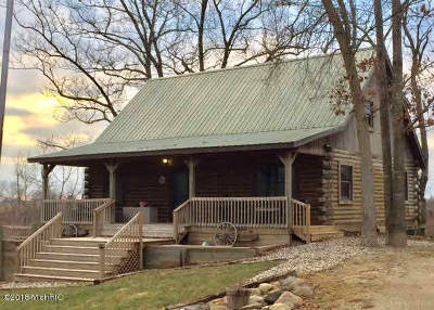 Hillsdale County Single Family Home For Sale: 4220 N Kelso Rd