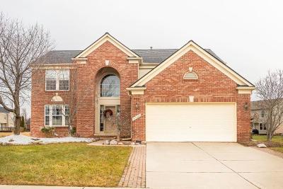 Canton Single Family Home For Sale: 4748 Sherwood Cir