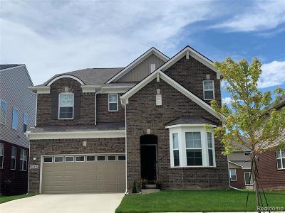 Novi Single Family Home For Sale: 28364 Hanover Dr