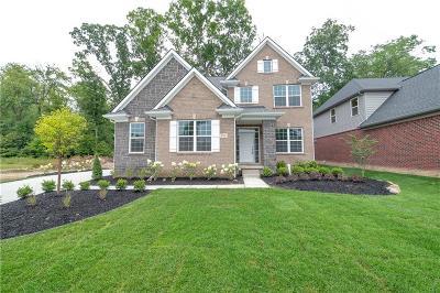 South Lyon Single Family Home For Sale: 234 Singh Blvd