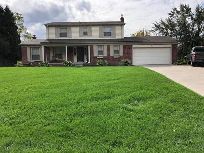 Novi Single Family Home For Sale: 41447 Glyme St