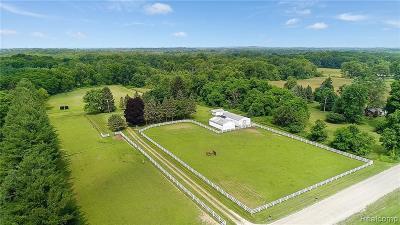 Washtenaw County Single Family Home For Sale: 8501 S Rushton Rd