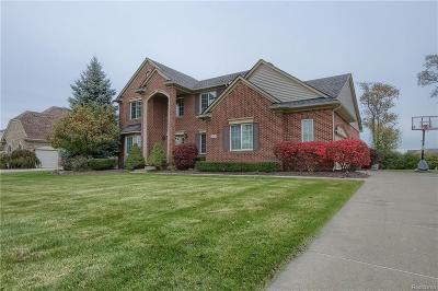 Canton Single Family Home For Sale: 856 Huntsville - Dr