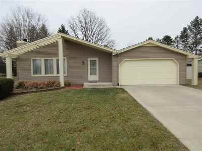 Lenawee County Single Family Home For Sale: 4355 Northington Dr
