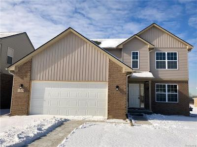 Belleville Single Family Home For Sale: 7214 Castell Blvd