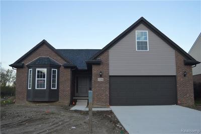 Belleville Single Family Home For Sale: 13521 Cambridge Crt