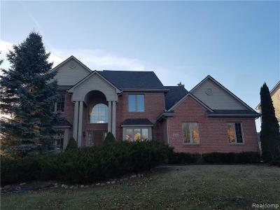 Northville Single Family Home For Sale: 16795 Brooklane Blvd
