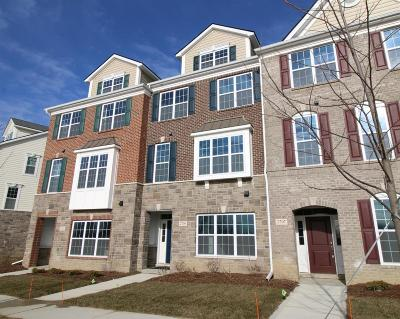 Ann Arbor Condo/Townhouse For Sale: 2709 S Spurway Dr