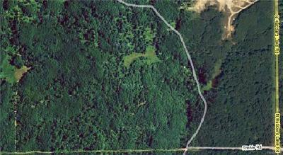 Residential Lots & Land For Sale: Ritchie & Hubbard Lake