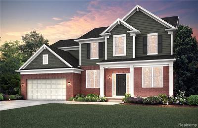 Novi Single Family Home For Sale: 25817 Wembley Dr