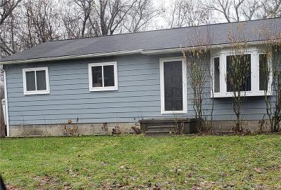 Single Family Home For Sale: 899 Michigan St