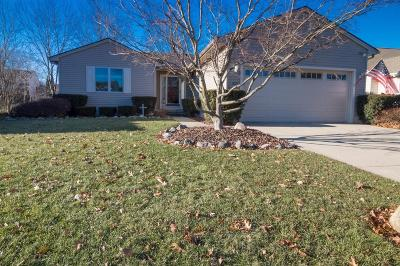 Washtenaw County Single Family Home For Sale: 1077 Heritage Dr