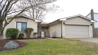 Livonia Single Family Home For Sale: 34623 Summers St