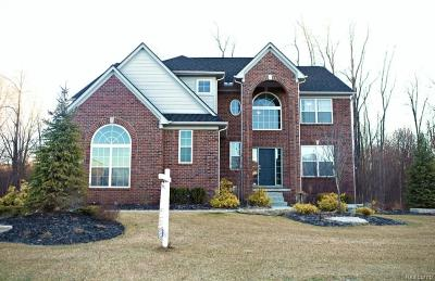 South Lyon Single Family Home For Sale: 23556 Stoneleigh Dr