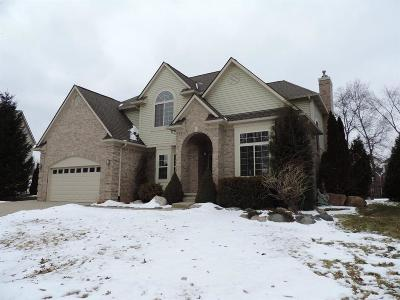 Chelsea Single Family Home For Sale: 688 Old Forge Ct