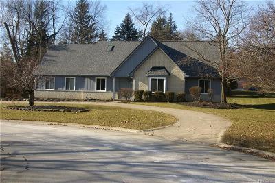 Farmington Hill Single Family Home For Sale: 31239 Sudbury St