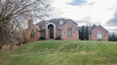 Ann Arbor Single Family Home For Sale: 7688 Ellens Way St