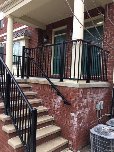 Milford Condo/Townhouse For Sale: 664 Village Ln