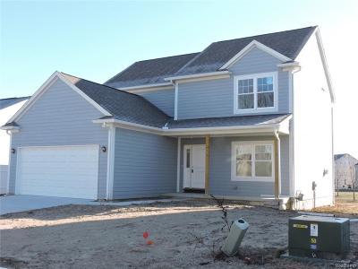 Washtenaw County Single Family Home For Sale: 8760 Barrington Dr