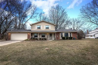 Farmington Hill Single Family Home For Sale: 29972 Valley Side Dr