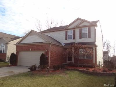 Washtenaw County Single Family Home For Sale: 9868 High Meadow Dr