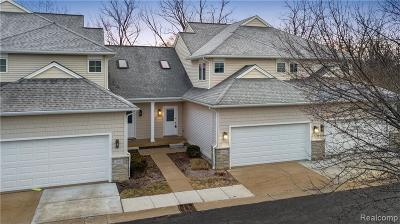 Ann Arbor Condo/Townhouse For Sale: 2044 Liberty Hts