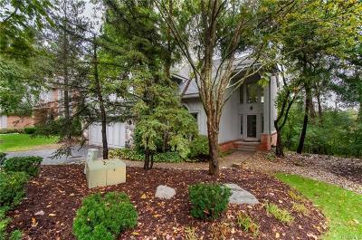 West Bloomfield Condo/Townhouse For Sale: 4936 Fairway Ridge