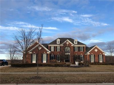 Novi Single Family Home For Sale: 50254 Drakes Bay Dr