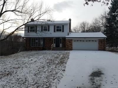Milford Single Family Home For Sale: 2963 Rowe Rd