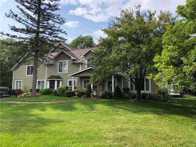 Novi Single Family Home For Sale: 46644 W 9 Mile Rd