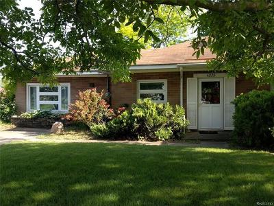 Michigan Center Single Family Home For Sale: 4225 Gale St