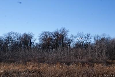 Residential Lots & Land For Sale: 1 S Elba Rd