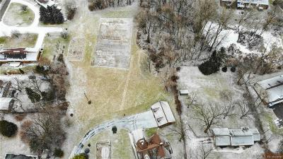 Whitmore Lake MI Residential Lots & Land For Sale: $975,000