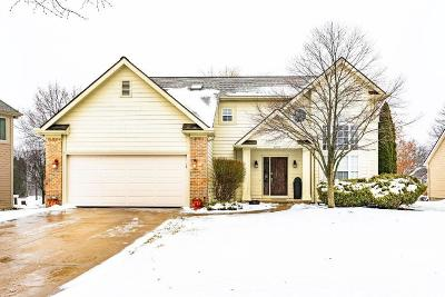 Washtenaw County Single Family Home Contingent - Financing: 4234 Spring Lake Blvd