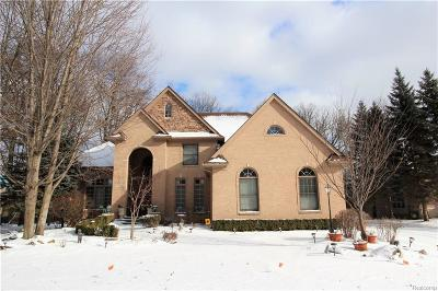 West Bloomfield Single Family Home For Sale: 4695 S Ridge Dr