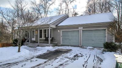 Washtenaw County Single Family Home For Sale: 1775 Miller Ave