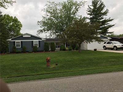 Farmington Hill Single Family Home For Sale: 25517 Lynford St