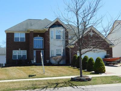 Washtenaw County Single Family Home For Sale: 4418 Center Valley Dr