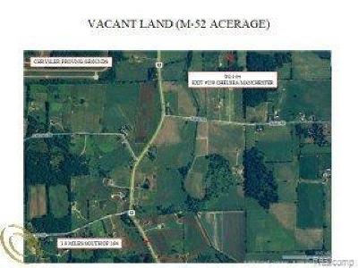 Manchester MI Residential Lots & Land For Sale: $134,900