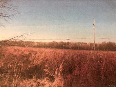 Northville MI Residential Lots & Land For Sale: $395,000