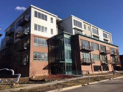 Ann Arbor Condo/Townhouse For Sale: 410 N First
