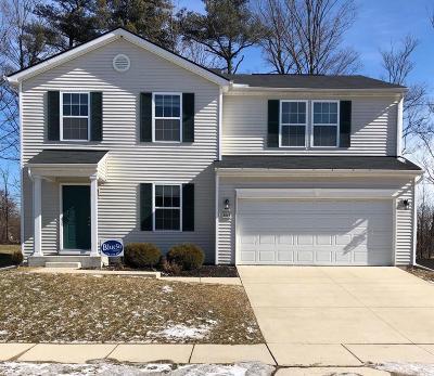 Dexter Single Family Home For Sale: 8015 Beechwood Blvd