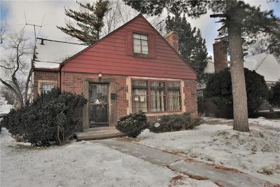 Single Family Home For Sale: 20037 Appoline St