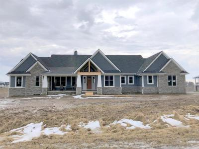 Ann Arbor Single Family Home For Sale: 1005 Pine Ridge Ct
