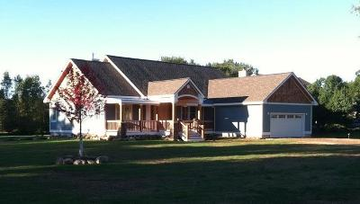 Ann Arbor Single Family Home For Sale: 3 Songbird Spring Ct