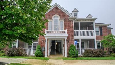 Ann Arbor Condo/Townhouse For Sale: 829 E Summerfield Glen Cir